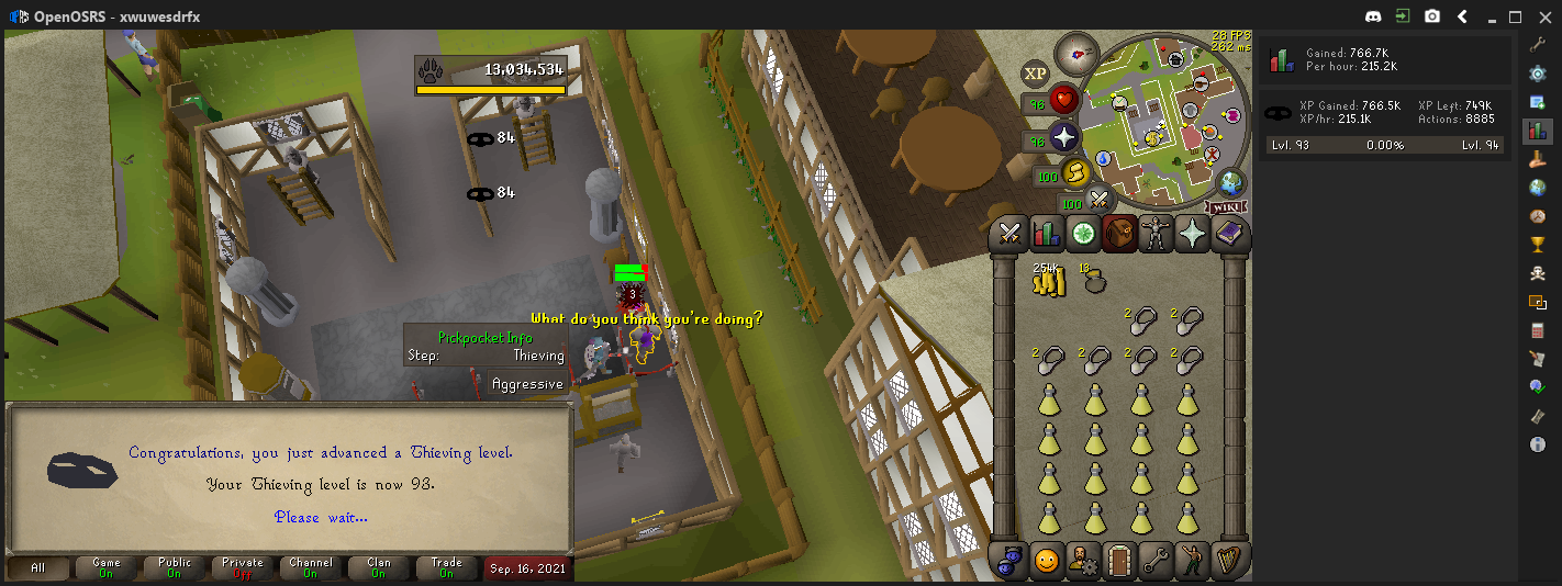 Thieving(93) 2021-09-16_16-54-08.png